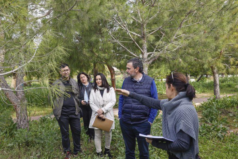 El Ayuntamiento de l'Alfàs mejorará el entorno del Parc Sant Pere