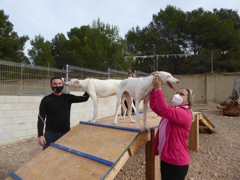 El Refugio de Animales de La Nucía se amplía