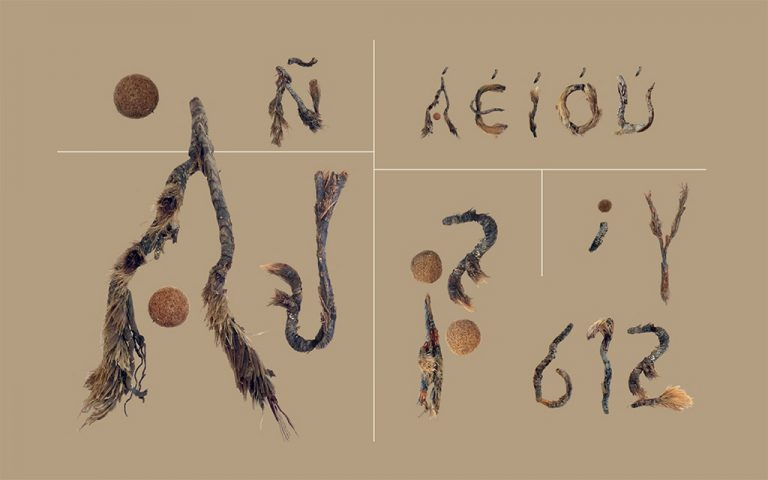 La Posidonia, «El Oro del Mediterráneo» ya tiene un tipo de letra.