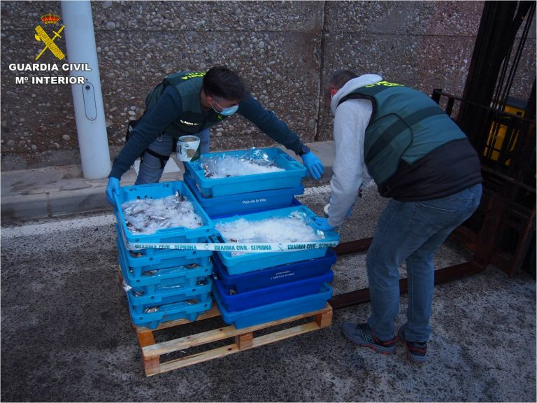 La Guardia Civil interviene más de cien kilos de pescado ilegal en Altea